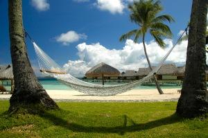 hammock-summer