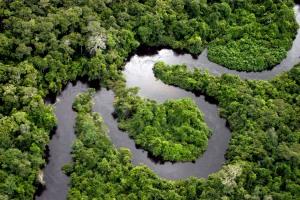 Iquitos-picture